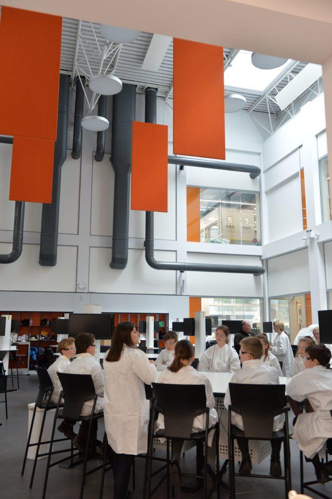 Bioengineering Experience SEMS QMUL